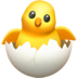 File:Chick.png